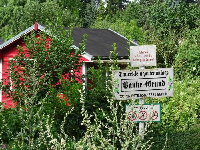 Kga Pankegrund Berlin Wedding Panke Kleingartenanlage